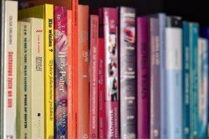 מידעון הספריה הדיגיטלית ינואר